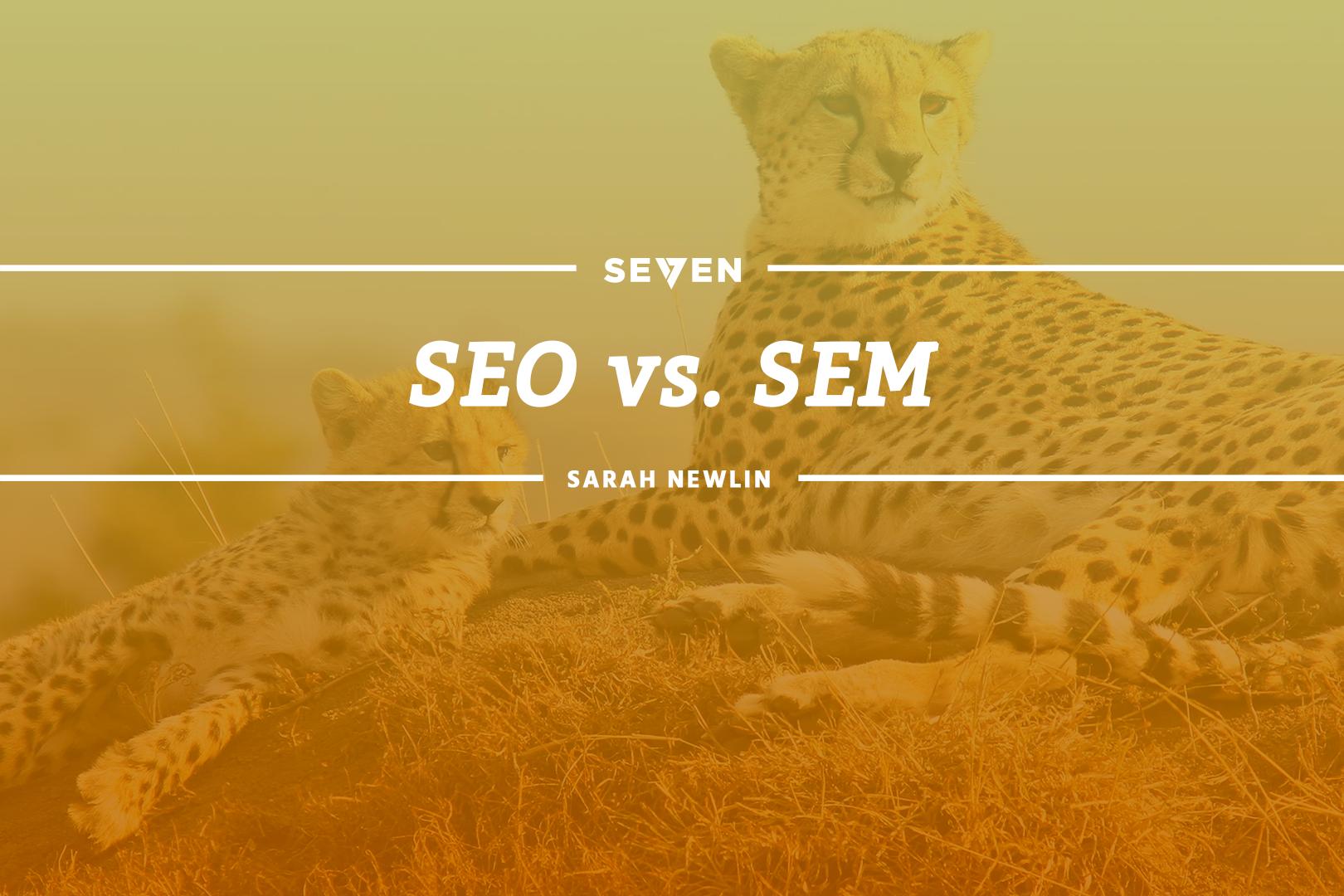 SEO vs. SEM - Studio 7 | Michigan Website Design and Digital Marketing Agency