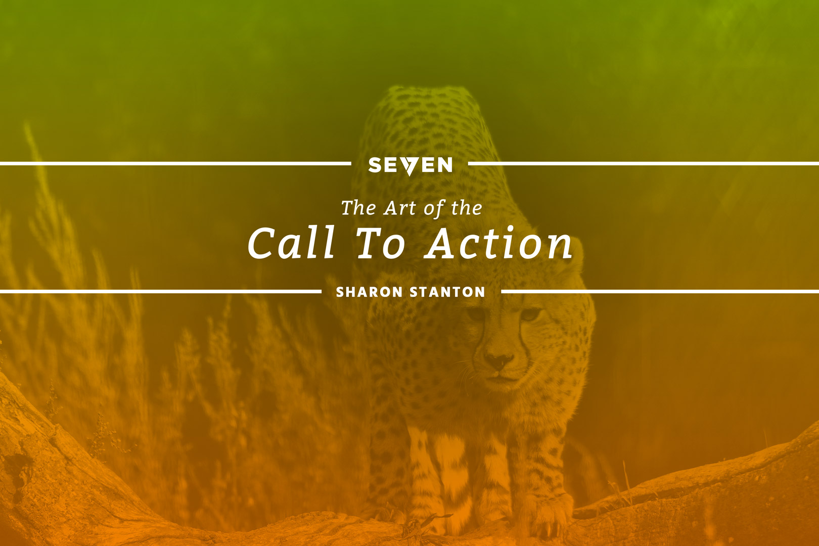 The Art of the Call to Action