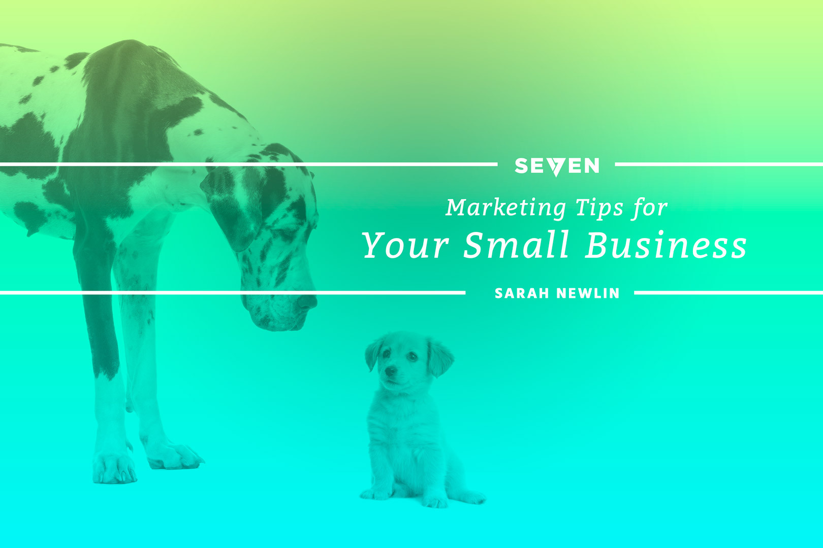 Marketing Tips for Your Small Business