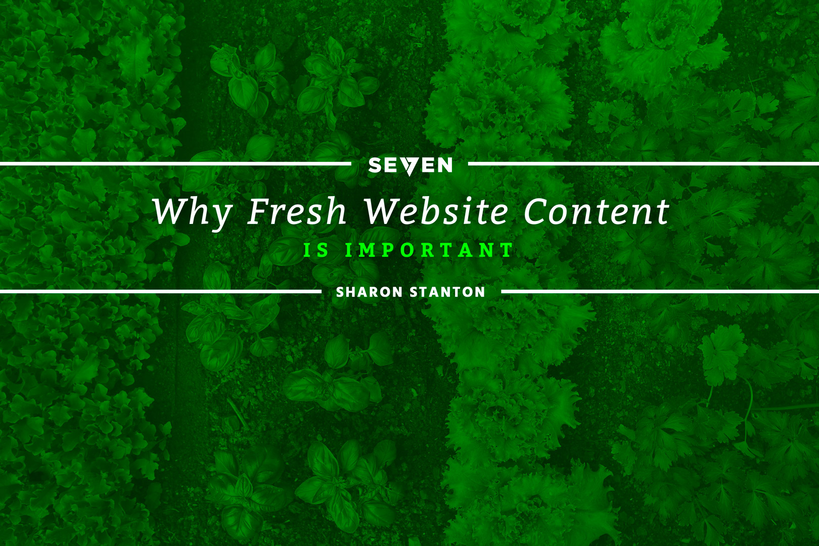 Why Fresh Website Content is Important