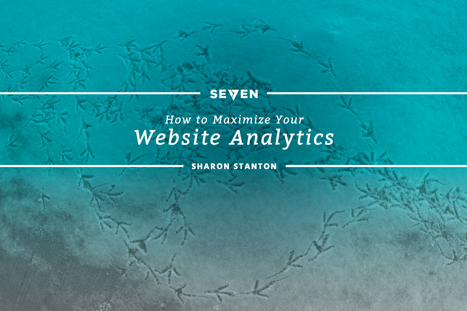 How to Maximize Your Website Analytics